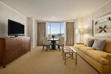 Pet Friendly Fairmont San Jose
