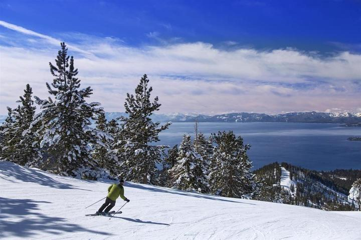Pet Friendly Hyatt Regency Lake Tahoe Resort