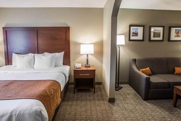 Pet Friendly Comfort Suites Southwest