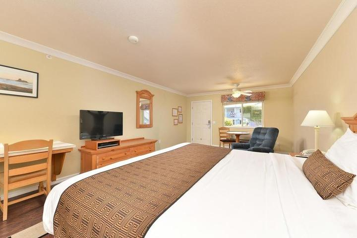 Pet Friendly Cayucos Beach Inn