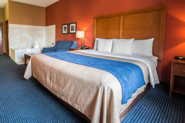 Pet Friendly Comfort Inn Crystal Lake
