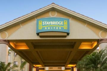 Pet Friendly Staybridge Suites Naples Gulf Coast