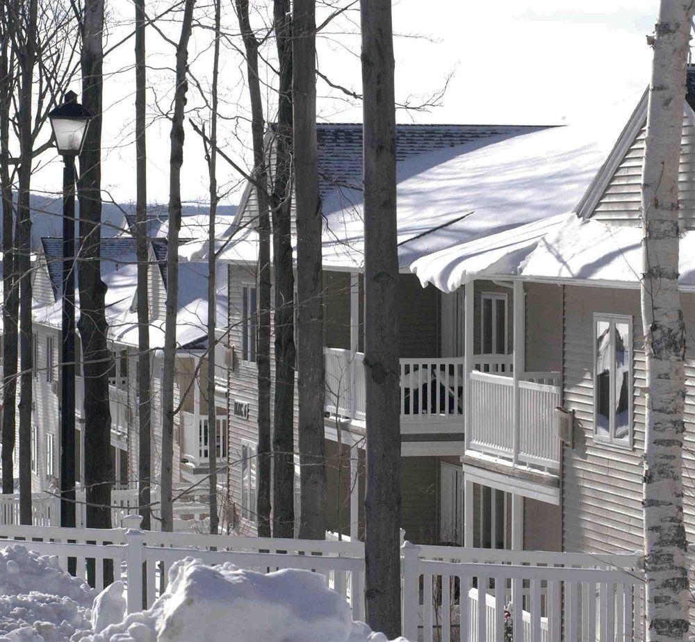Vacation Village At Berkshires Pet Policy