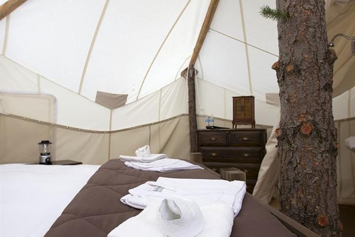 Pet Friendly Hotels in Coram, MT - Bring Fido
