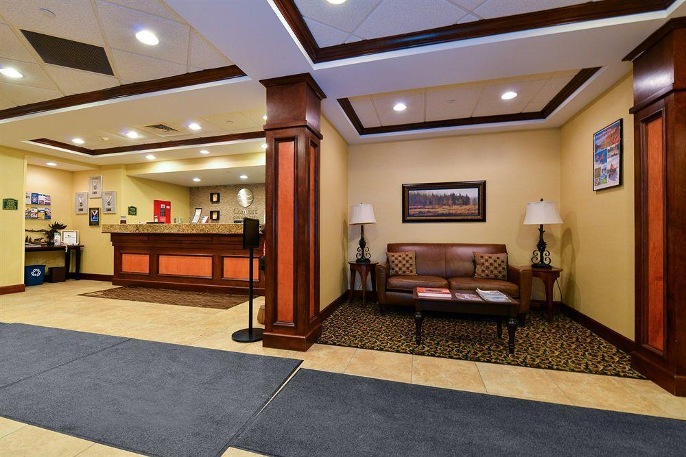 Comfort Inn Amp Suites Wilton Pet Policy