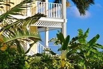 Pet Friendly Sunshine Suites Resort