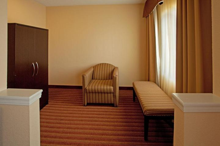 Pet Friendly Holiday Inn Express & Suites Greenville Airport