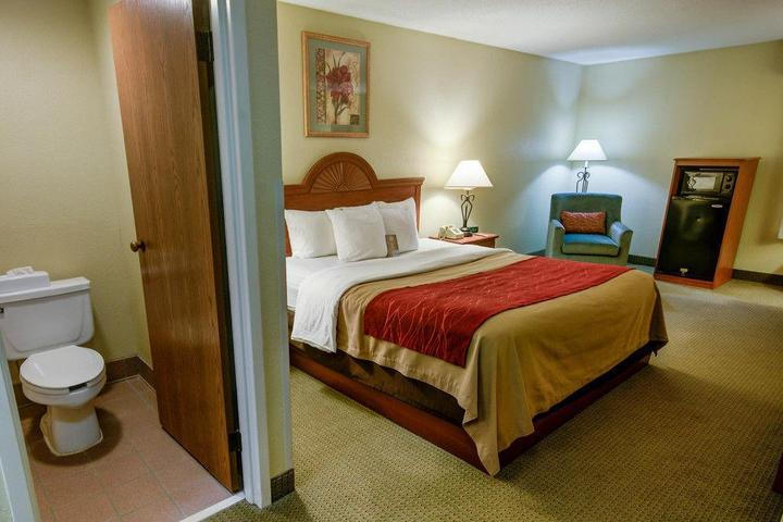 Pet Friendly Comfort Inn Pine Grove