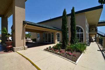 Pet Friendly Best Western Marble Falls Inn