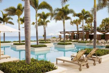 Pet Friendly Viceroy Anguilla Resort & Residences