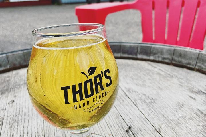 Pet Friendly Pups & Pints Patio Party at Thor's Hard Cider
