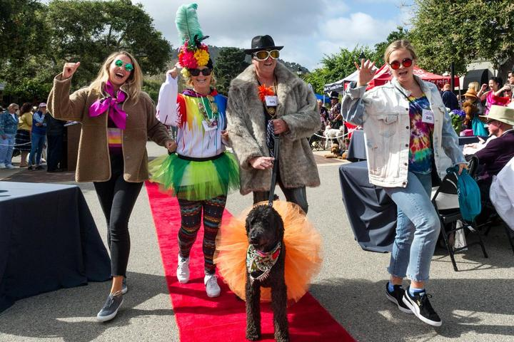 Pet Friendly Poodle Day and Parade