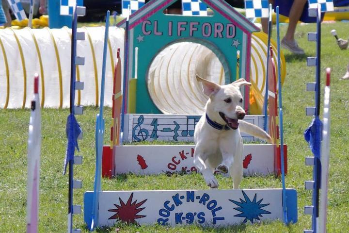 Pet Friendly Farmington Fido Fest