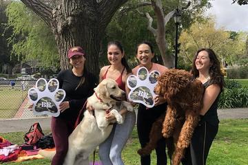 Pet Friendly BarkBody- Dog Friendly Workout Class!