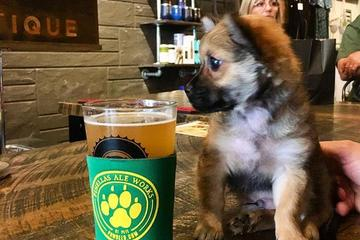 Pet Friendly Yappy Hour