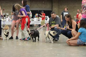 Pet Friendly PUGfest