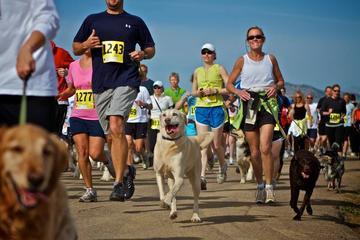 Pet Friendly Rascal's Run 5K, Dog Walk and Family Fun Day