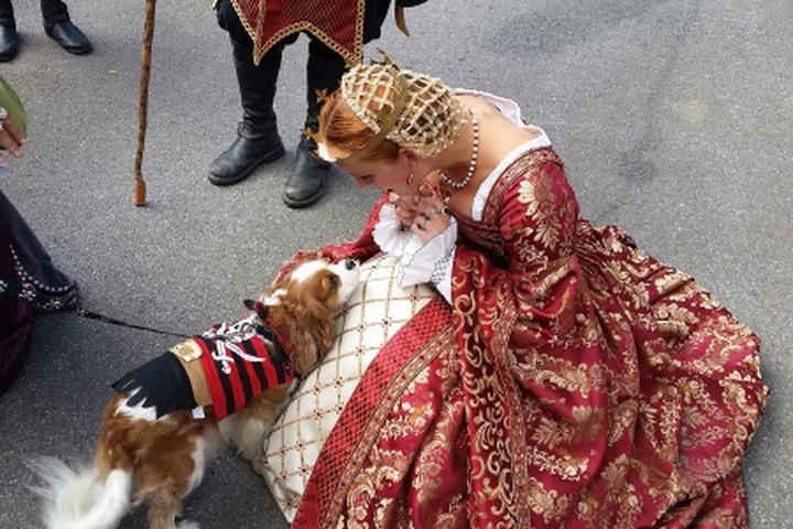 Pet Friendly Pennsylvania Renaissance Faire