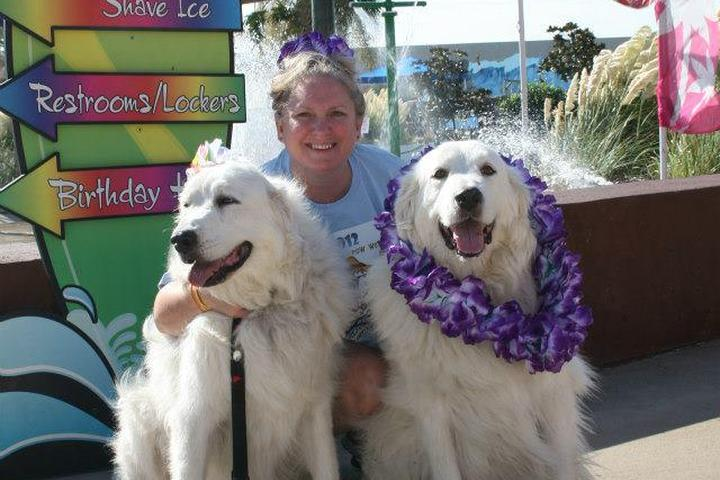 Dog Events in Texas - Bring Fido