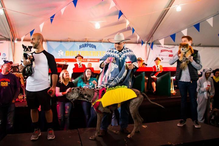 Pet Friendly Harpoon Dogtoberfest