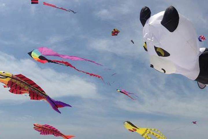 Pet Friendly Annual Rogallo Kite Festival