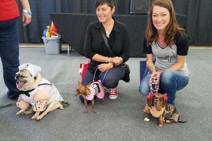 Pet Friendly Colorado Springs Pet Expo