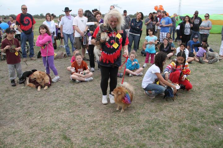 Pet Friendly Annual Fest of Tails - Kite Festival & Dog Fair