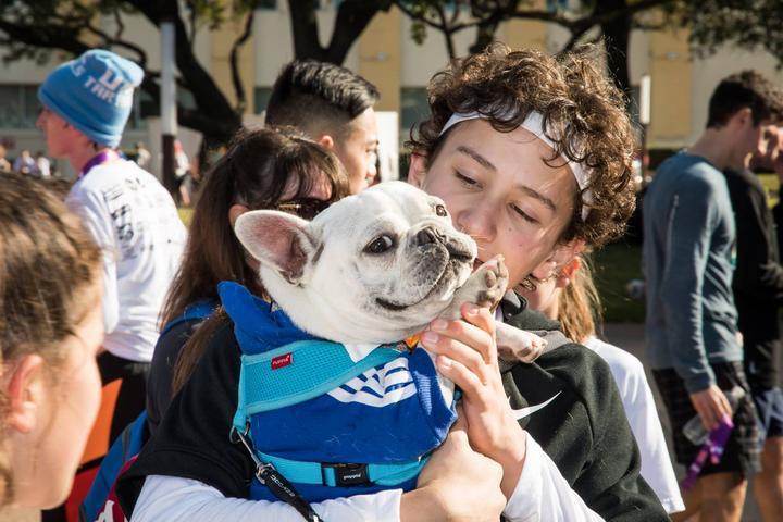 Pet Friendly Annual Dallas YMCA Turkey Trot