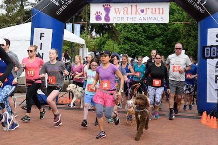 Pet Friendly Walk/Run for the Animals