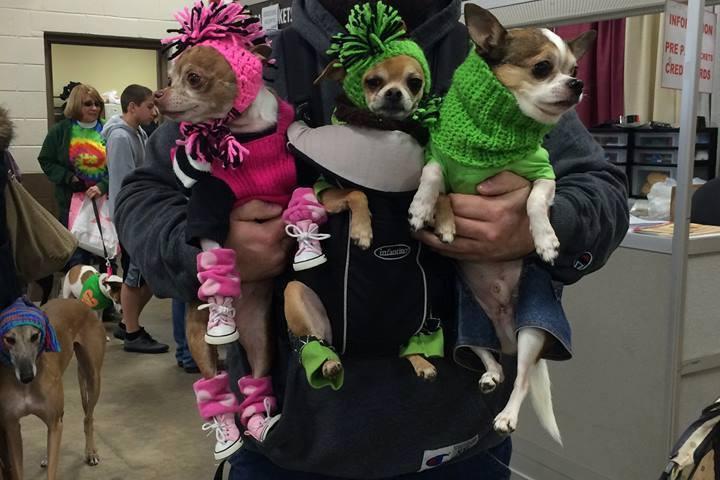 Pet Friendly Morgantown Pet Expo