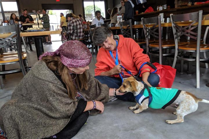 Pet Friendly Live Music at Triskelion Brewing Company