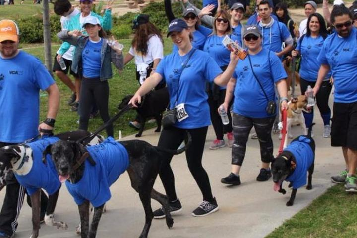 Pet Friendly San Diego Humane Society's Virtual Walk for Animals