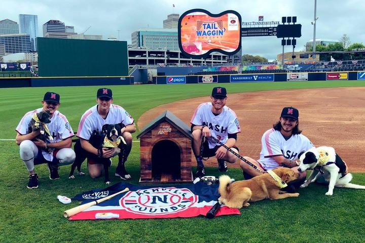 Pet Friendly Tail Waggin' Tuesday with the Nashville Sounds