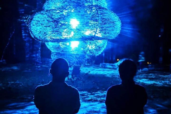 Pet Friendly North Forest Lights at Crystal Bridges