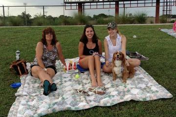 Pet Friendly Bark at the Ball Park - Dog Days of Summer