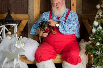 Pet Friendly NAH Santa Paws
