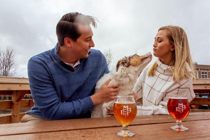 Pet Friendly Corgi Meetup at Metazoa Brewing Company