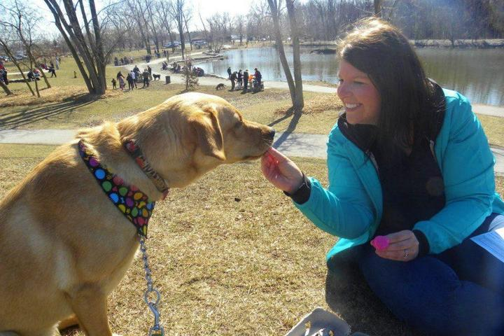 Pet Friendly National Service Dogs' Egg Hunt for Dogs