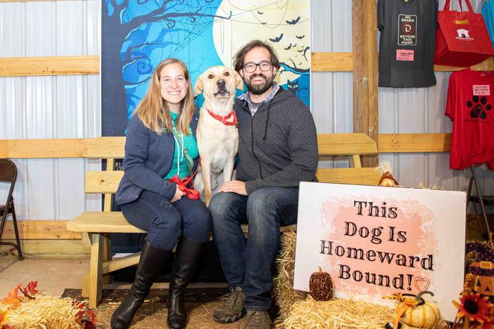 Pet Friendly Shelter Dog Adoption Event