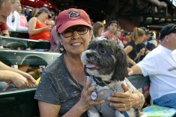 Pet Friendly Dog Days of Summer with the Arizona Diamondbacks