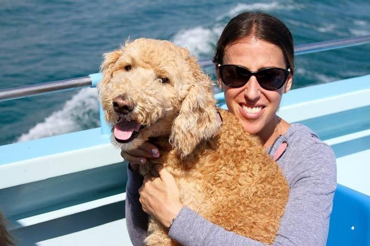 Pet Friendly Dog Days of Summer Boston Harbor Cruise