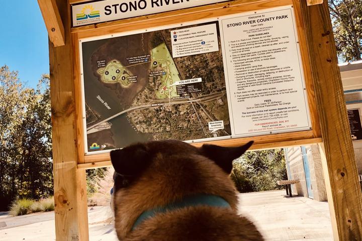 Pet Friendly Stono River Park