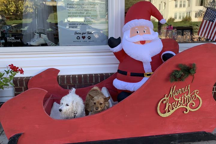 Pet Friendly Fetch Thrift Shop