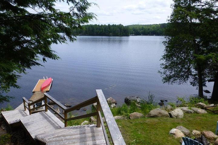 Pet Friendly Soyer's Lake Cottage