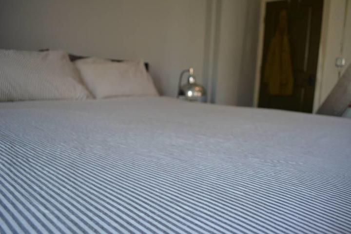 Pet Friendly Winston Salem Airbnb Rentals