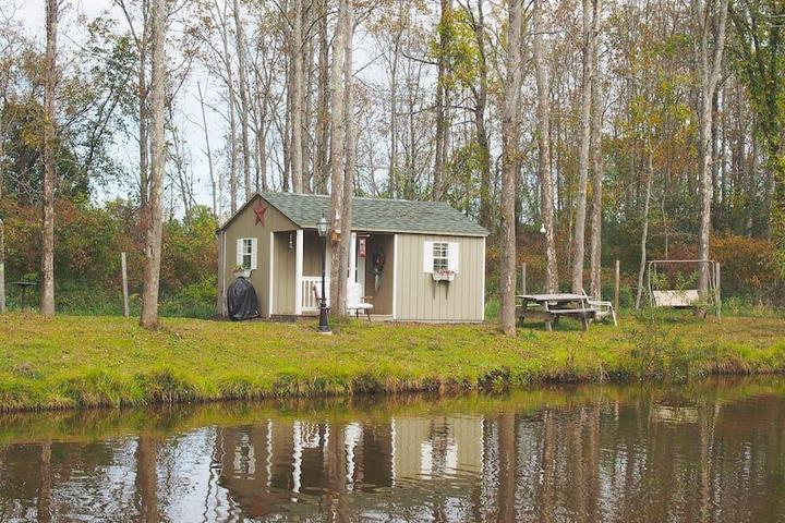 Pet Friendly Greenville Airbnb Rentals