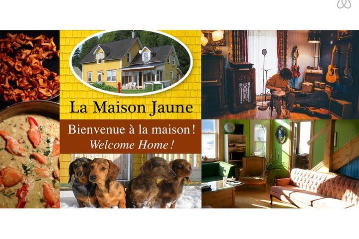 Pet Friendly Dalhousie Airbnb Rentals