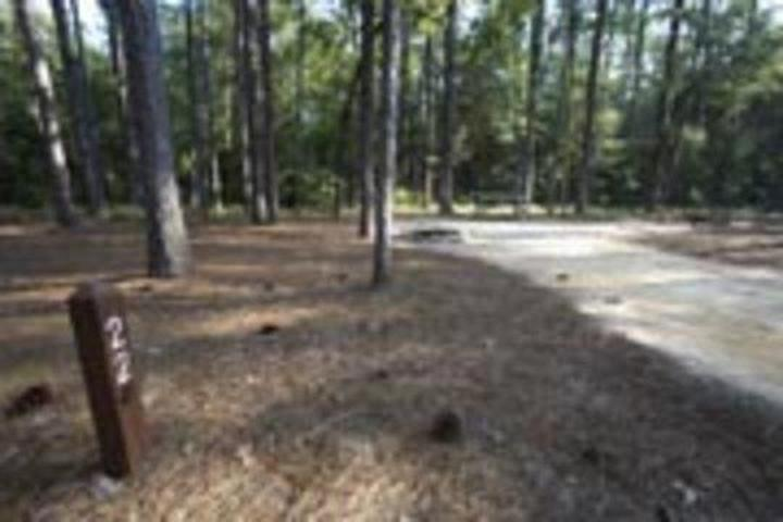 Pet Friendly Aiken Campground