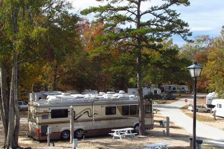Pet Friendly Leisure Time Campground