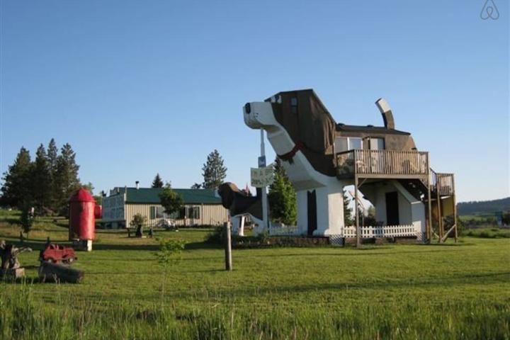 Pet Friendly Cottonwood Airbnb Rentals